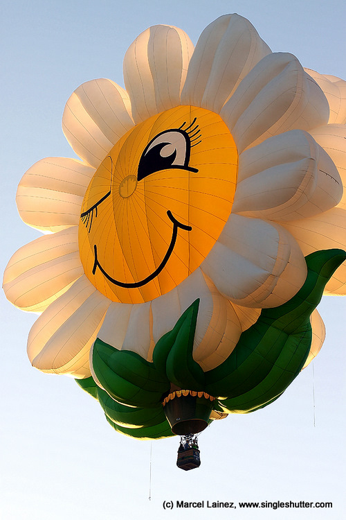 17th Hot Air Balloon  2597